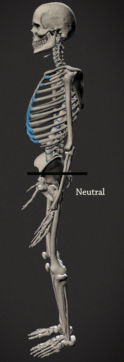 neutral-posture-with-line